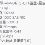 企鹅小屋 香港国际 100G硬盘VPS